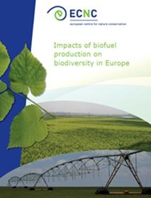 Biofuels Report